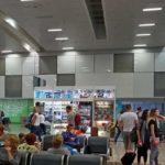 Аэропорт в Гоа встречает туристов